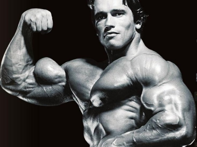 Muscle Builder Rick Wayne Arnold Schwarzenegger 3-71 Bodybuilding
